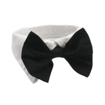 Best Black Dog Costumes - EOM Selected Adjustable Dog Bow Tie Puppy Pet Costume Collar Stripe Bow Tie Dogs Cats Puppy Tie Neck Tie - Perfect for Wedding Tie Party Accessories (Formal Collar Bowtie-black)