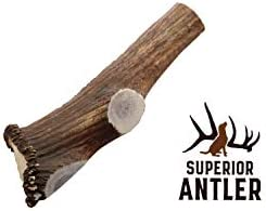 Jumbo Elk Antler Split for Dogs XXL G Natural Premium Grade A. Antler Chew. Naturally Shed, Hand-Picked, and Made in The USA. NO Odor, NO Mess. GUARENTEED SATISIFACTION. for Dogs 70-90 Lbs.