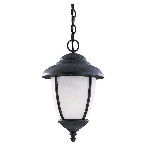 Sea Gull Lighting 60048-185 Outdoor Pendant with Swirled MarbleizeGlass Shades, Forged Iron ()