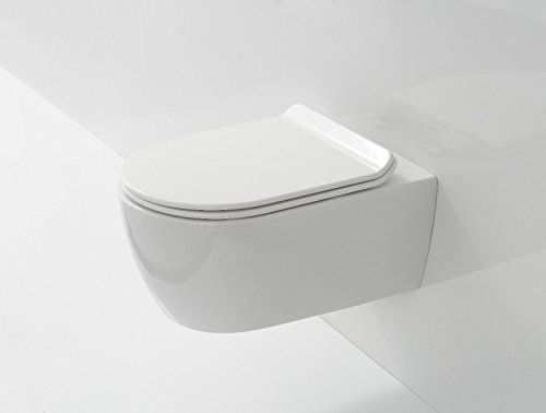 RIMLESS Compact Space Saver D Shape Wall Hung Toilet WC Soft Close