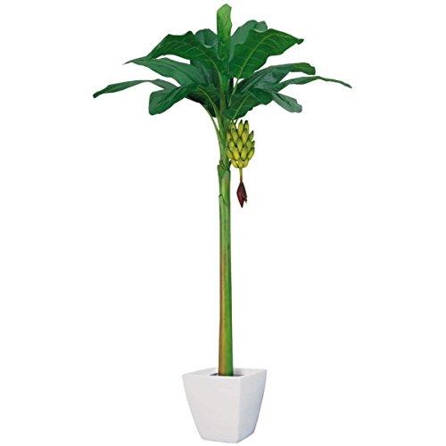 バナナツリー(LL)(房バナナ付)【フェイクグリーン(人工樹木)】《ポット(鉢)は別売りです》(BT2004LL) B079FKB9P9