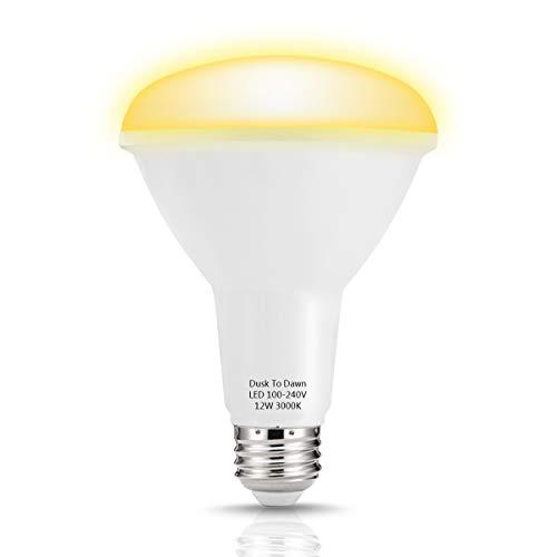 85 Watt Flood Light Bulbs in US - 6