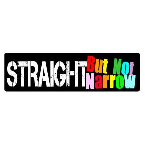 Gay Rainbow Sisters Gay Pride Bumper Sticker Straight but Not Narrow