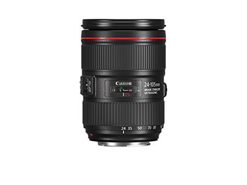 Canon 24-105mm F4L IS II