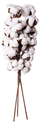 Farmhouse Style Cotton Ball Pick Branches - Rustic Home Decor - Set of 3, 20 Inches Long