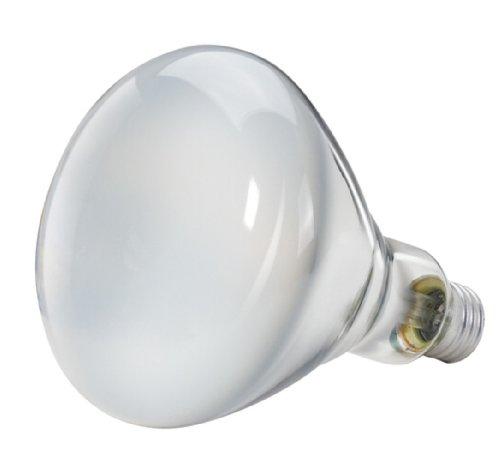 046677139278 - Philips 139279 Soft White 65-Watt BR40 Indoor Flood Light Bulb, 2-Pack carousel main 2