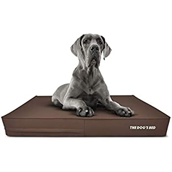 Amazon.com : The Dog's Bed Orthopedic Dog Bed XXL Brown
