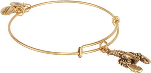 Alex and Ani Women's Lobster Charm Bangle Rafaelian Gold Finish One (Gold Lobster Charm)