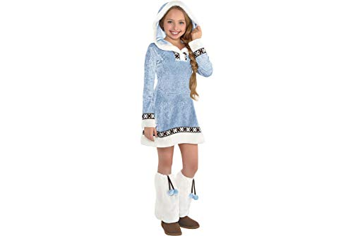 Arctic Princess Costumes - Girls Arctic Princess Costume - X-Large