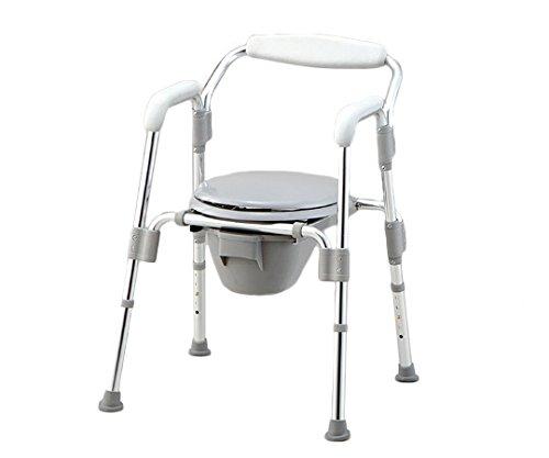 アズワン コモド椅子(折りたたみ式) HT2100 /0-8128-01 B00SUGVO6U