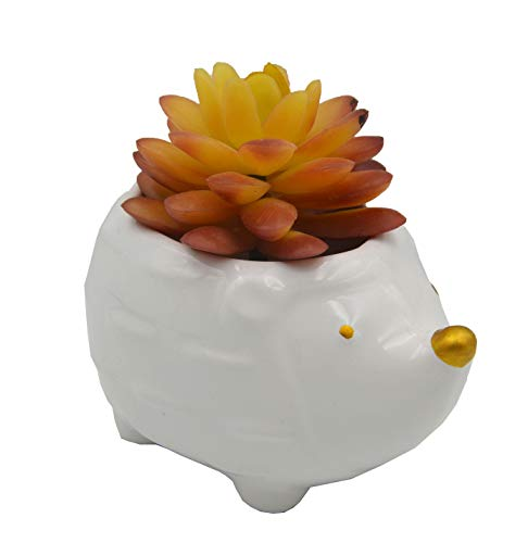 Hedgehog Shaped Planter Succulent Plant Pot Pen Pencil Brush Holder Pot Storage Container Desk Organizer Decoration Accessories