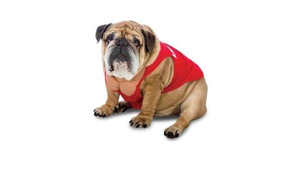 Funny Zelda Wisdom Lifeguard Swimsuit Dog Pet Costume Halloween Life Guard Red
