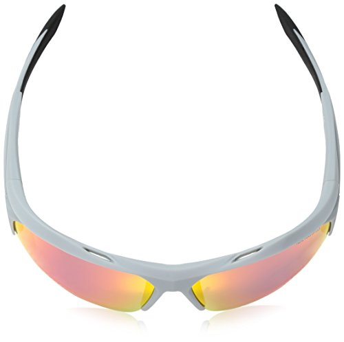 Nike Sonnenbrille (NIKE TERMINUS R EV1031) MATTE WOLF GRY/GRY ML INFRARED