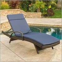 Christopher Knight Home 296785 Salem Outdoor Chaise Lounge Brown with Navy