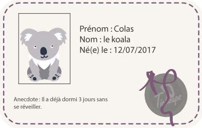 Tichoups Chaussons b/éb/é cuir souple Colas le koala 16//17
