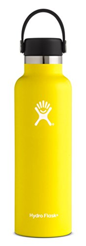Outdoor 1.1 Quart Bottle (Hydro Flask 21 oz Double Wall Vacuum Insulated Stainless Steel Leak Proof Sports Water Bottle, Standard Mouth with BPA Free Flex Cap, Lemon)