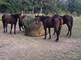 Round Bale Slow Feed Hay Net 6x6 2 1/2 Inch Hole