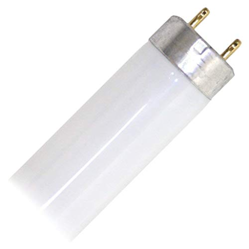 (Eiko 15521-1 F15T8/CW Straight T8 Cool Fluorescent Tube Light Bulb, 18