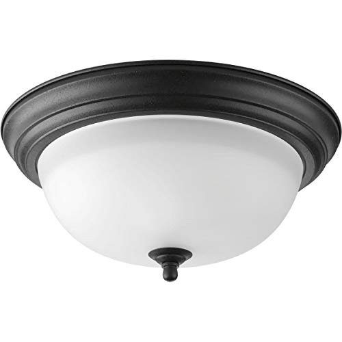 (Progress Lighting P3925-80 2-Light Flush Mount with Etched Glass Bowl )