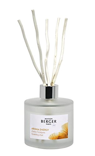 Lampe Berger Maison Berger Paris - Aroma Energy Scented Bouquet- Sparkling Zest