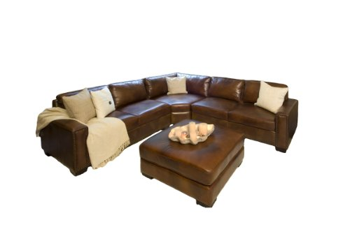Amazon Com Elements Carlyle Top Grain Leather Sectional