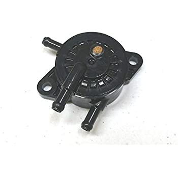 Amazon.com : Briggs & Stratton 808656 Fuel Pump Reps 691034 ...