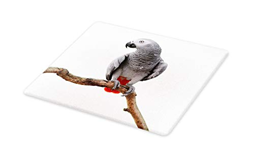 - Ambesonne Grey Cutting Board, Parrot Bird Psittacus Erithacus Standing on a Branch Tropical Nature Wildlife, Decorative Tempered Glass Cutting and Serving Board, Large Size, White Grey