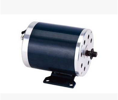 GZFTM Motor eléctrico de los Motores de la Vespa de MY1020 750W ...