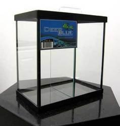 Fish & Aquatic Supplies 1Gal 2 Way Tall Betta Tank Black 8X4x8 W/Glass Canopy &Amp; Dividers