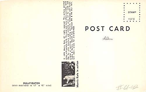 Bullfighter by Morris Katz Tarjeta Postal Bullfighting ...