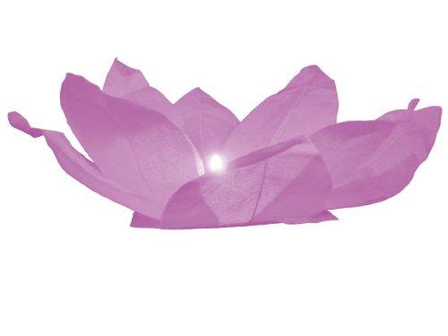 Fleur de Lotus flottante de l'eau lanternes rose