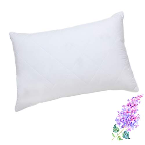 Queen/Standard Bed Pillow for Sleeping, White Goose feather Pillow with 600 Thread Count 100% Egyptian Cotton Cover Premium & Hypoallergenic Feather Pillows Queen Size 20x28 inches (White,1 Pack)