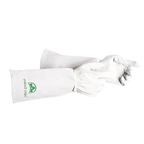 Xl Mens Cowhide Glove - 5