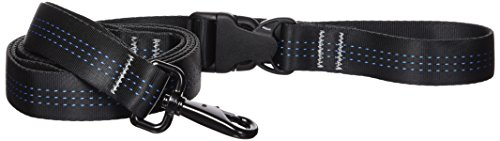 Stunt Puppy Everyday Leash Black