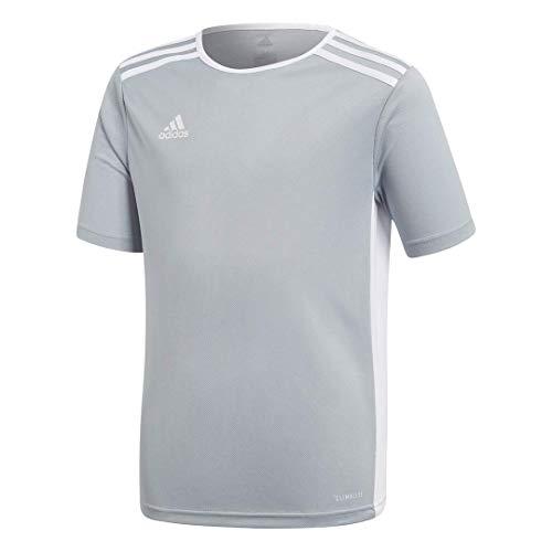 adidas Youth Entrada 18 Jersey, Light Grey/White, Medium