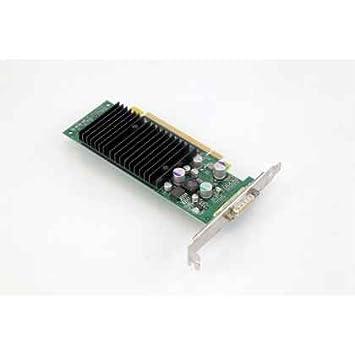 TARJETA GRAFICA PCIE NVIDIA QUADRO NVS 280 64MB: Amazon.es ...