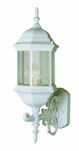 Trans Globe Lighting 4351 SWI Outdoor Josephine 26
