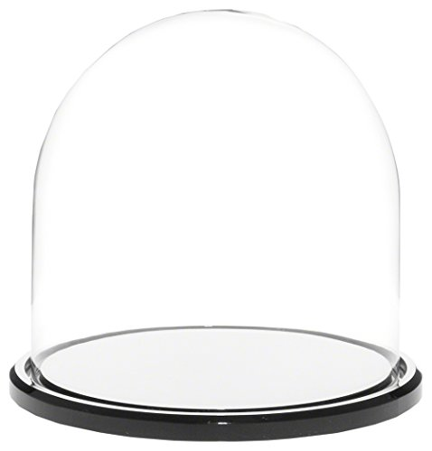 Plymor Brand 5.5 x 5.5 Glass Display Dome Cloche Black Acrylic Base