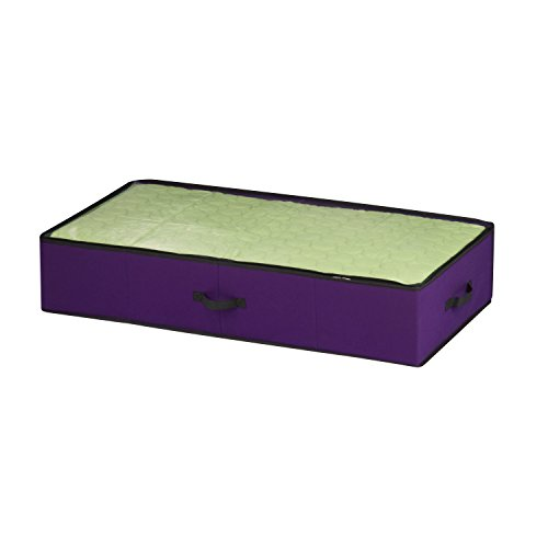 Honey Can Do SFT 05246 Non Woven Storage Organizer