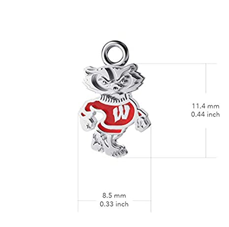 Badger Logo Enamel Dayna Designs University of Wisconsin Post Earrings Sterling Silver Jewelry Small for Women//Girls