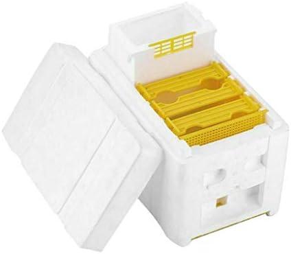jgashf Imkerei Werkzeug Bienenzuchtbox Bienenbox Bienenstockbox, BestäUbungsbox BienenbestäUber Box Bienenzucht KöNig Box Bienenzucht Kit