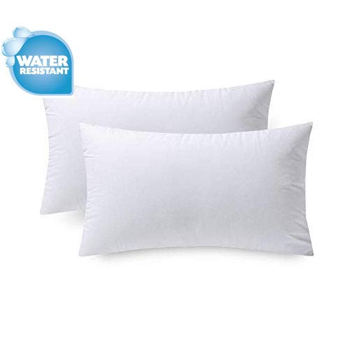 IZO Home Goods Premium Outdoor Anti-mold Water Resistant Hypoallergenic Stuffer Pillow Insert Sham Square Form Polyester, 12