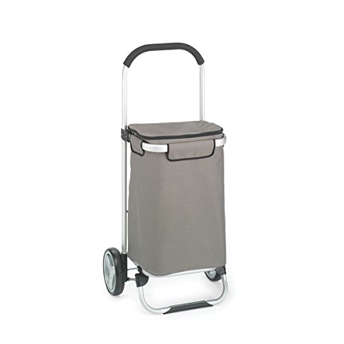 ote Cart w/Fabric Bag, Foldable, Aluminum Frame ()