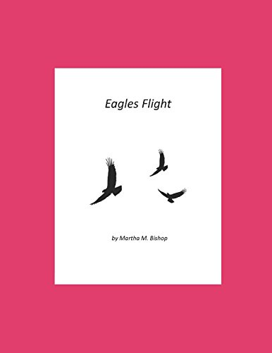 Eagles Flight (Book 3 of The Eagle Lake Trilogy) PDF