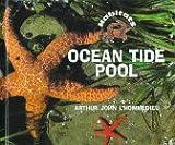 Ocean Tide Pool, Arthur John L'Hommedieu, 0516207407