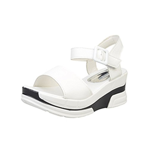 SKY Comfortable to wear it !!! Zapatos de mujer Sandalias de verano Peep-toe Low Shoes Sandalias romanas Flip Flops 5cm heel Blanco
