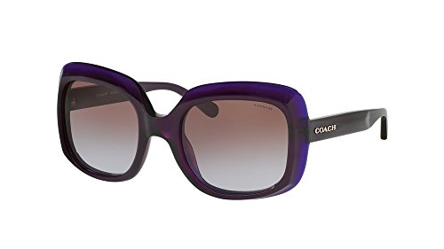 COACH Women's 0HC8194 Purple One - Sunglasses Purple Coach