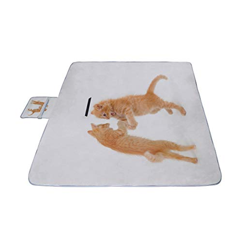 HTJZH Funny Dancing Cat On White Floor Picnic Mat 57''(144cm) x79''(200cm) Picnic Blanket Beach Mat with Waterproof for Kids Picnic Beaches and Outdoor Folded Bag