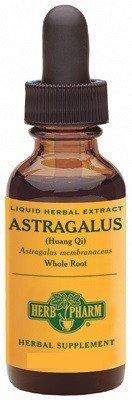 Herb Pharm - Astragalus 4 oz [Health and Beauty]
