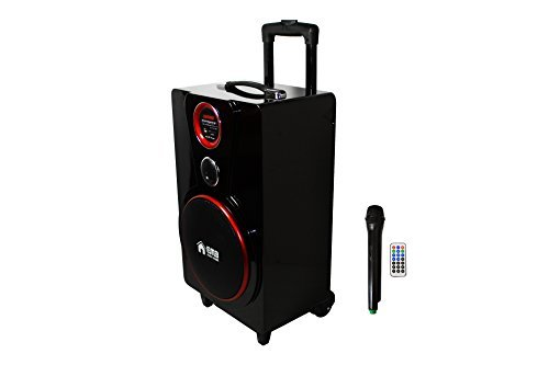 EMB PK82 BLACK Color 800W 8'' Portable Professional Rechargeable BOOM Box Speaker